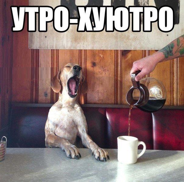 Доброе утро-хуютро
