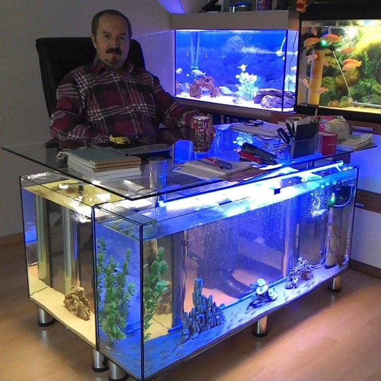 Директор магазина аквариумов